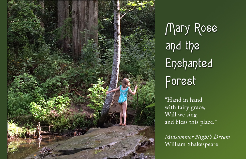 Mary Rose and the Enchanted Forest header image